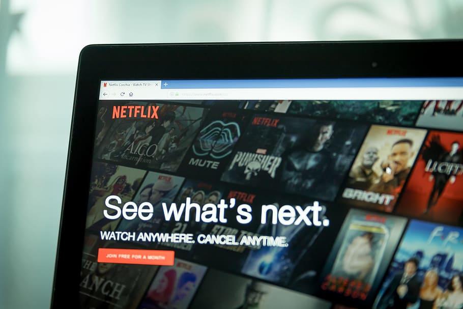 Netflix - platforma w modelu subskrypcyjnym znana na całym świecie