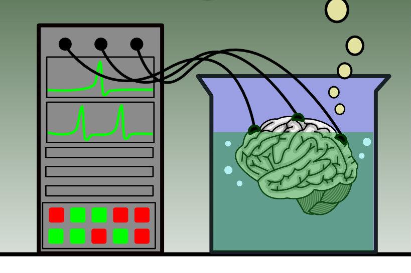 Machine learning używane jest przy systemach OCR do faktur