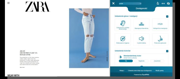 optymalizacja e-commerce - sklep Zara